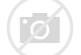 Afbeeldingsresultaten voor logo NAM Nationale Grasdag 2020