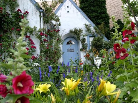 gallery of flower house including flowers for garden