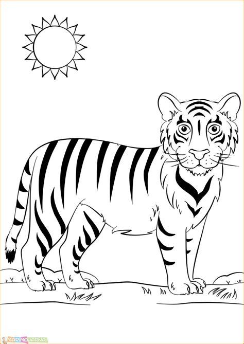 Coloring Harimau by 20 Mewarnai Gambar Harimau Untuk Tk Paud Sd