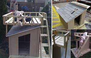 10 free dog house plans icreatived for How to build a nice dog house