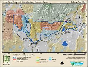 Condors in Red Cliffs Reserve a possibility; lead ammo a ...
