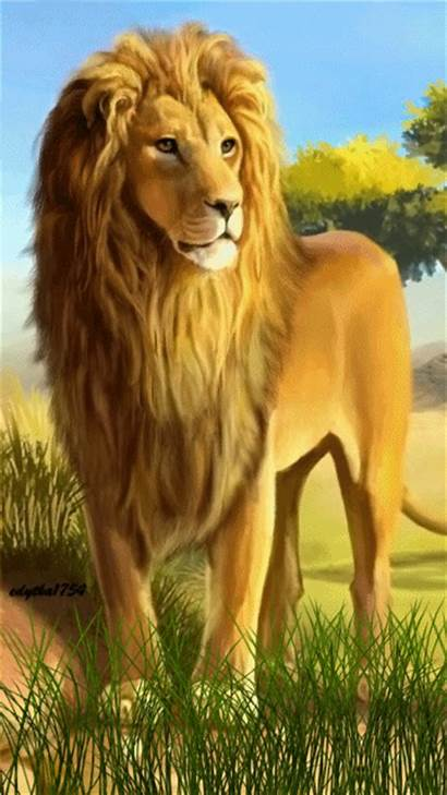 Lion Animated Wallpapers Mobile Iphone Gifs Leon