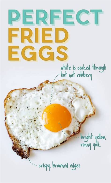 how to make eggs how to cook the perfect eggs every time the whoot