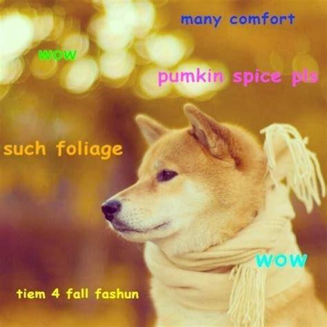 Shiba Inu Meme - 17 best images about shibe the doge on pinterest