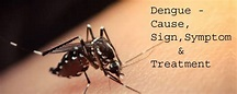 Dengue Fever: Everything you need to know | KayaWell