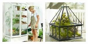 Mini Serre Jardin : petite serre de jardin choix et conseils ~ Premium-room.com Idées de Décoration