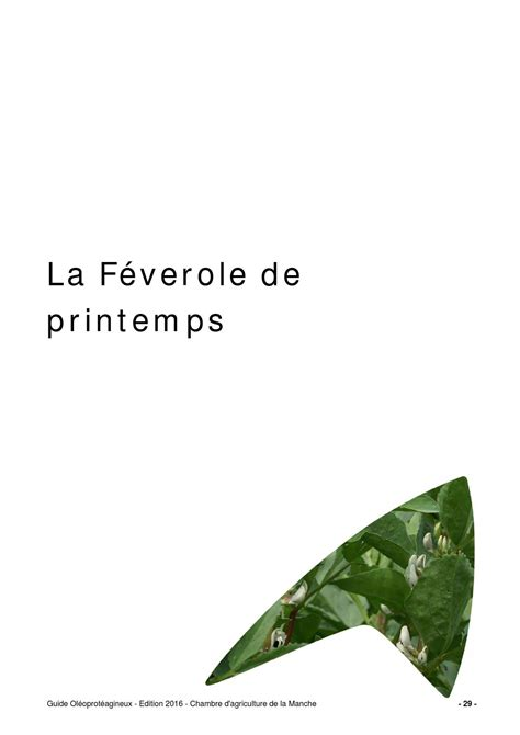 chambre agriculture 29 guide feverole 2016 by chambre d 39 agriculture manche ca50