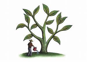 Steven Noble Illustrations  Farmer Growing Crops
