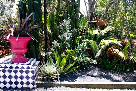 สวนแคคตัส สไตล์เม็กซิกันที่ Prem Café in the garden