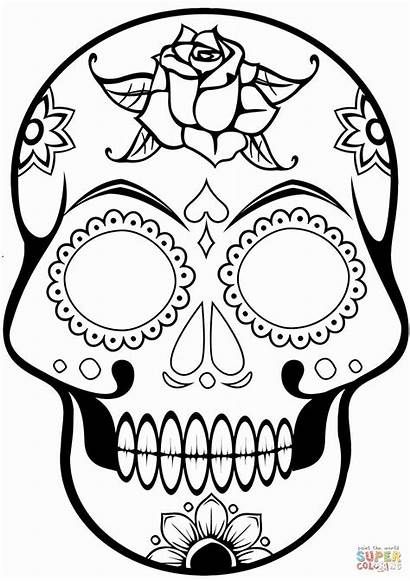 Skull Pirate Coloring Pages Sugar Printable Crafts
