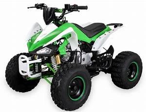 Quad 125cc Panthera : quad 125cc semi automatique panthera 8 vert ~ Melissatoandfro.com Idées de Décoration