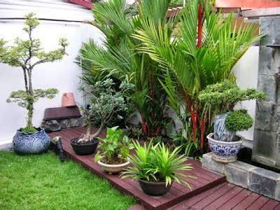 desain taman belakang rumah minimalis desain taman