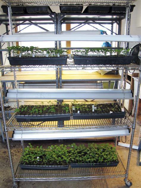 seed starter grow lights starting seeds indoors under fluorescent lights garden org