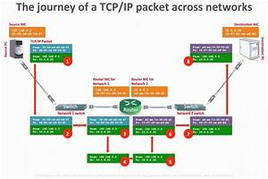 Networking Cable Diagram  U2014 Untpikapps