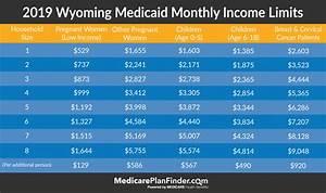 Beginner U0026 39 S Guide To Wyoming Medicaid