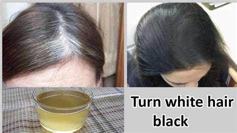 Hair Turning Naturally by How To Turn White Hair Into Black Hair Naturally