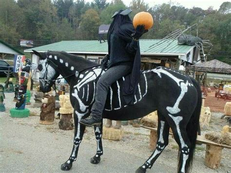 awesome horse rider costume halloween pinterest