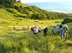 Hikes and history in Barbados - MEP Caribbean Publishers ...