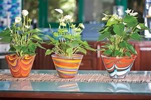les plantes a fleurs d39interieur une tres belle decoration With affiche chambre bébé avec pot de fleur exterieur bois