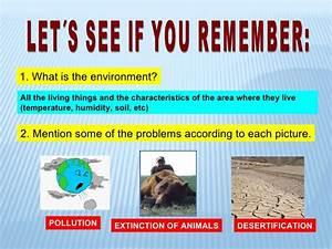 Solutions for environmental pollution essay
