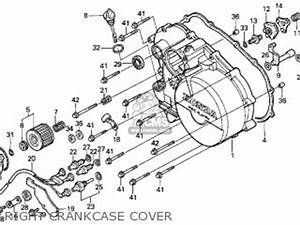 1999 Honda Fourtrax 300 Wiring Diagram : honda trx300 fourtrax 300 1999 usa parts list partsmanual ~ A.2002-acura-tl-radio.info Haus und Dekorationen