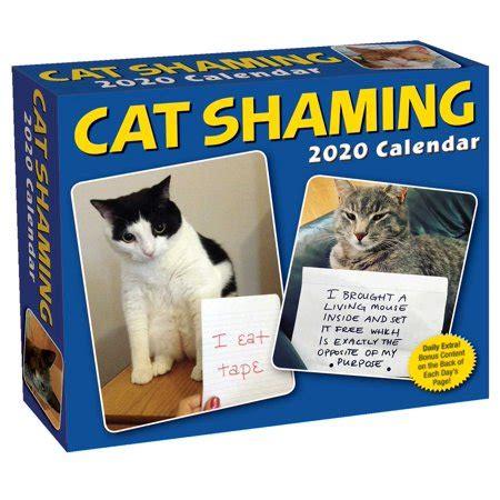 cat shaming day day calendar walmartcom