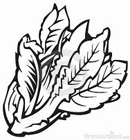 HD Wallpapers Coloring Pages Leafy Vegetables