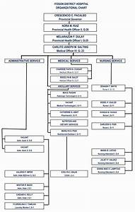 25 Hospital Organizational Chart Examples In 2020