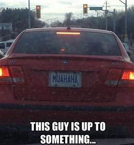 Funny, License, Plates, Part, 4