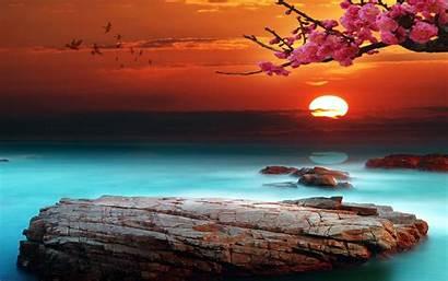 Desktop Background Sunset Bright Sky Beach Wallpapers