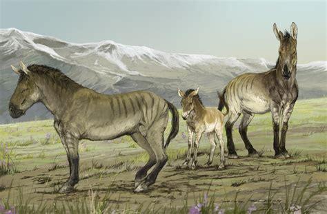 horses ancient dna america extinct north genus site