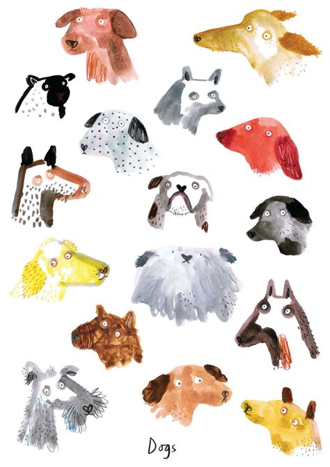 dog illustrations  lorna scobie illustration dog
