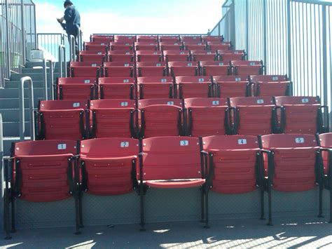 gator stadium chair chair design dodger stadium beach
