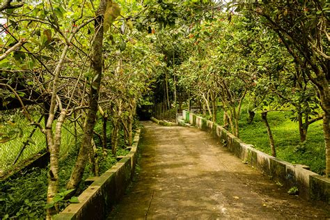 Garden : Sukorambi Botanical Garden