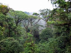 The Most Popular Destinations in Costa Rica | Costa Rica ...