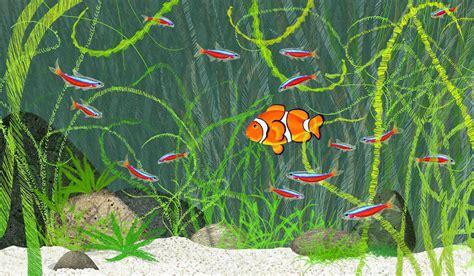 reproduction poisson en aquarium reproduction des neons en aquarium 28 images la reproduction du n 233 on hemigrammus