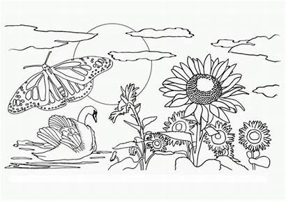 Coloring Nature Pages Printable Easy Preschool Drawing