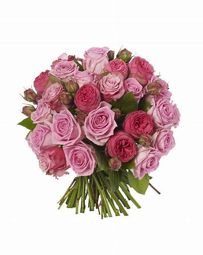 Pink Roses Bouquet Flowers Rose Bouquets Flower