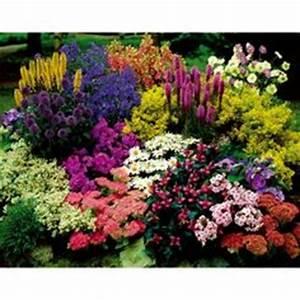 1000 images about massif fleurs on pinterest autumn With tapis chambre bébé avec les bouquets de fleurs