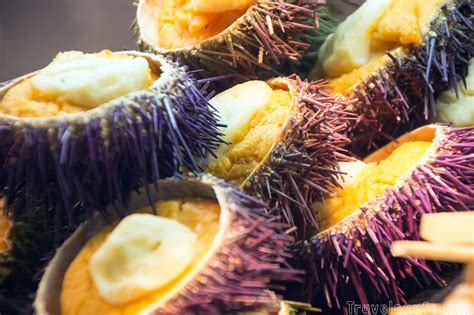 creation cuisine 15 traditional foods you must eat in spain