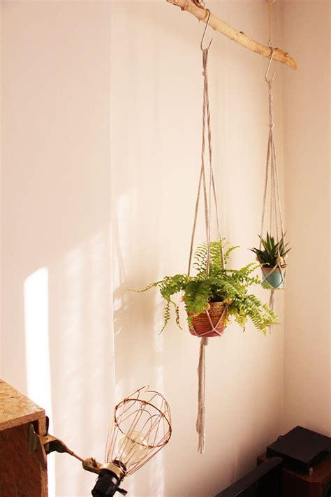 bureau de tendances mes plantes suspendues blueberry home
