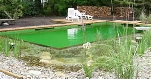 Nettoyer Piscine Verte : entretien d 39 une piscine naturelle ~ Zukunftsfamilie.com Idées de Décoration