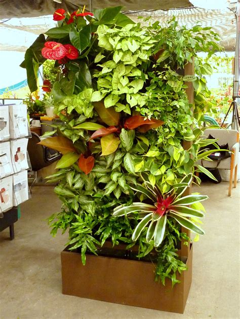 How To Plant Vertical Garden by 10 Best Plants To Grow For Vertical Garden The Self