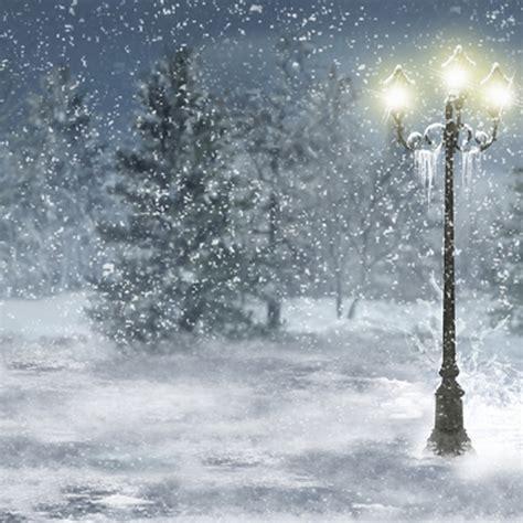 winter wonderland snow tree photography backgrounds vinyl