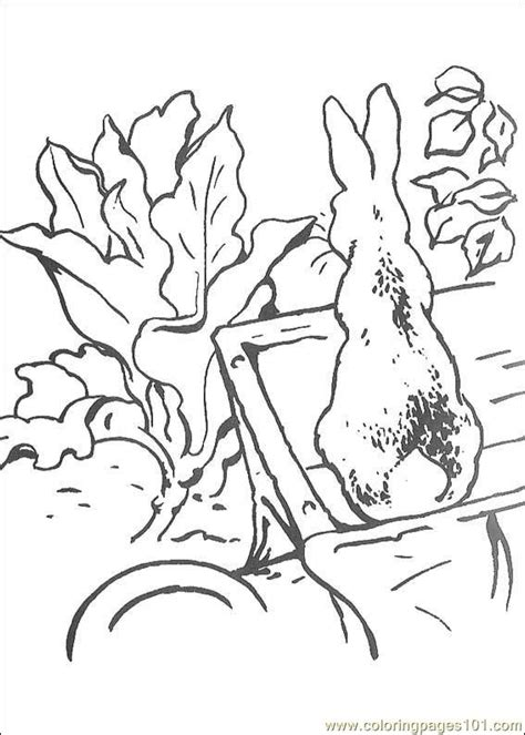 peter rabbit coloring page  peter rabbit coloring