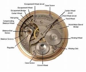 Pocket Watch Parts  U0026 Their Descriptions