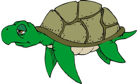 Water turtle clipart - Clipground