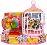 little bird cage with ...