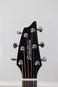 Anatomy Of Acoustic Guitar