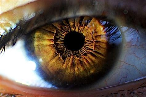 eye candy   origins movies galleries paste